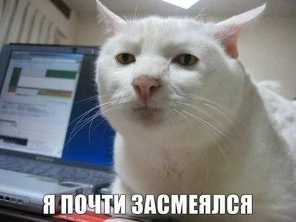 IvanTaranovфотография